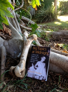 Banyon tree and bone with book